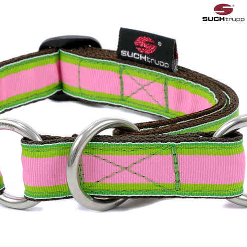 Schlupfhalsband, Stopp-Hundehalsband APPLE medium
