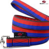 Cityleine / Countryleine, Hundeleine, Führleine FUN RED-BLUE medium-large