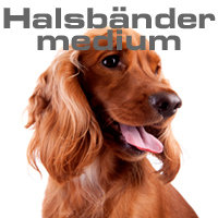 Hundehalsbänder MEDIUM