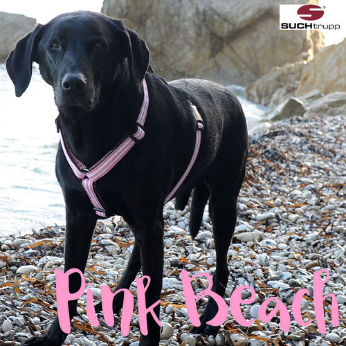 Hundegeschirr, Brustgeschirr PINK BEACH large