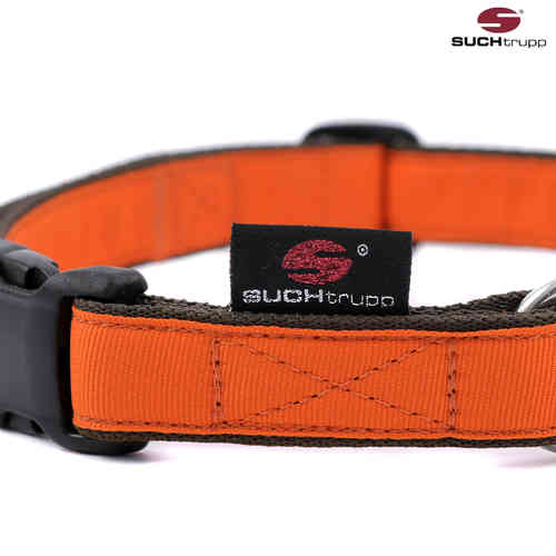Hundehalsband PURE ORANGE large, Hundehalsbänder