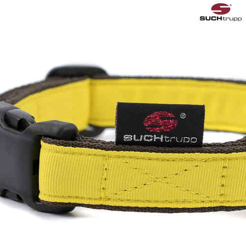 Hundehalsband PURE LIGHT-YELLOW medium, Hundehalsbänder
